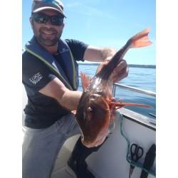 Pêche en mer Journée Rade...